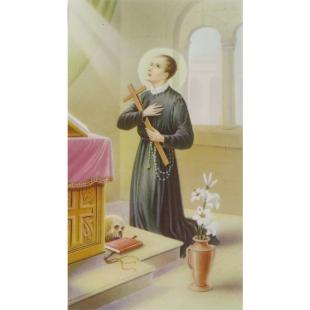 Heiligenbild Gerardus